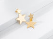 SHOOTING STARS golden silver earrings_Charm Silver