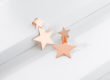 SHOOTING STARS rose golden silver earrings_Charm Silver